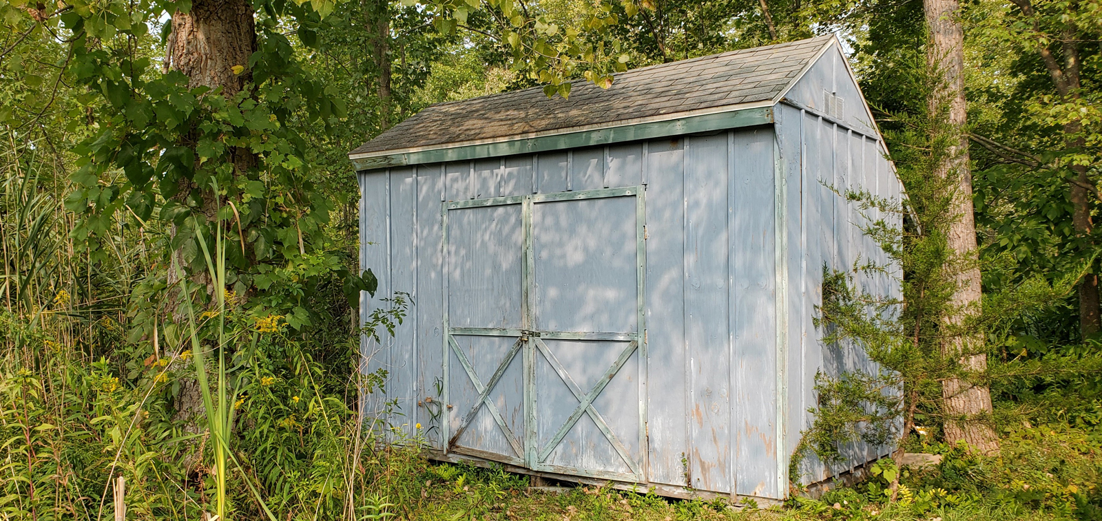 Shed-a